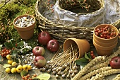 Requisites for a bird food wreath
