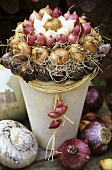 Arrangement of bulbs in a flowerpot