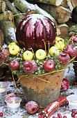 A Christmas arrangement of apples in a plant pot