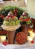 Arrangement of moss, fruit and berries