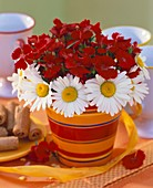 Table decoration: red dianthus & ox-eye daisies in flowerpot