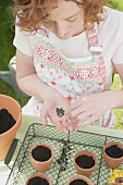 Young woman sowing flower seeds