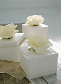 Gift boxes with white roses