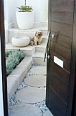 Small dog sitting on steps outside open exterior door