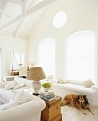 Hund ruht auf dem Boden in einem rundum weissen Wohnzimmer mit Holzkommode und Korb-Tischlampe