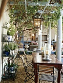 Wooden table and folding chairs on roofed terrace with pergola structure, columns and metal shelves of potted plants