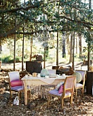 Set table with autumnal decor in garden