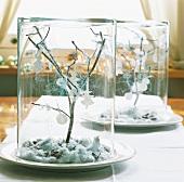 Christmas arrangements in glass jars