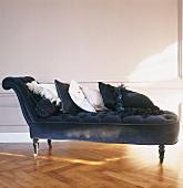 Schwarze Samt-Chaiselongue mit Dekokissen