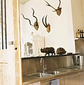 Edelstahlküche mit Geweihen an der Wand