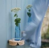 Eine Blüte in blauer Wasserflasche an der Holzwand