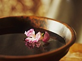 Flower floating in bowl