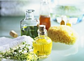 Plant oils for skin and beauty care