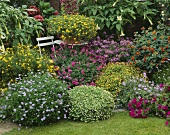 Summer garden with various types of flowers