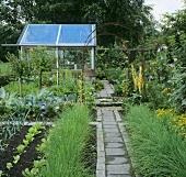 Kitchen garden and flower garden with greenhouse