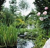 Ponds in large garden