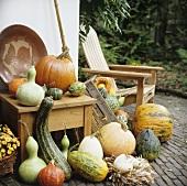 Pumpkins and squashes (autumn decorations)