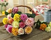 Bunte Rosen in einem Körbchen