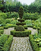 Green garden with clipped box and yew