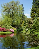 Parkanlage mit Teich