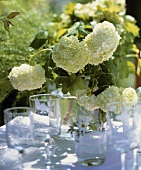 A vase of green hydrangeas on a table out of doors