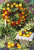 Wreath of oranges, holly, bay leaves & rose hips for Christmas
