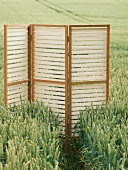 Screen in cereal field