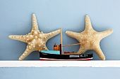 Star fish and a model boat on a wall shelf