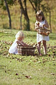 Two little girls collecting apples in a meadow