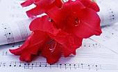Red gladioli on sheet music