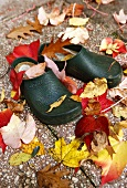 Garden shoes in autumnal leaves