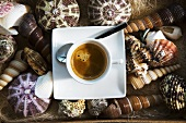 Cup of espresso on shells