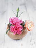 Rosa Duftnelken in Keramikvase
