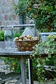 Frische Äpfel im Korb auf Gartentisch