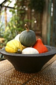 Bowl of baby squashes