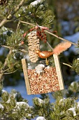 Peanuts in bird feeder with glass bird on tree