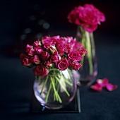 Rote Rosen in zwei Vasen