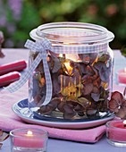 Einmachglas mit verblühten Hortensien und Windlicht