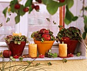 Arrangements of hydrangeas, apples & candles on windowsill