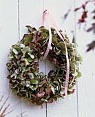 Wreath of faded hydrangeas
