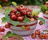 A bowl of crab-apples
