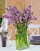 Vase of Spanish bluebells and grasses