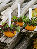 Small orange pumpkins used as candle holders