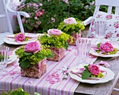 Laid table decorated with roses and lady's mantle