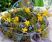 Wreath of hay, narcissi, grape hyacinths and mimosa