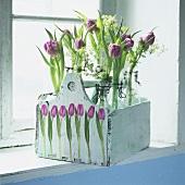 Tulips in flip-top bottles