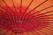 A Japanese umbrella