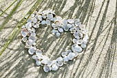 Shells arranged in a heart shape on beach