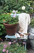 Gartenszene: Topf mit Geranien & Gartenschere auf Klappstuhl