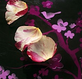 Rose petals on surface with flower motif